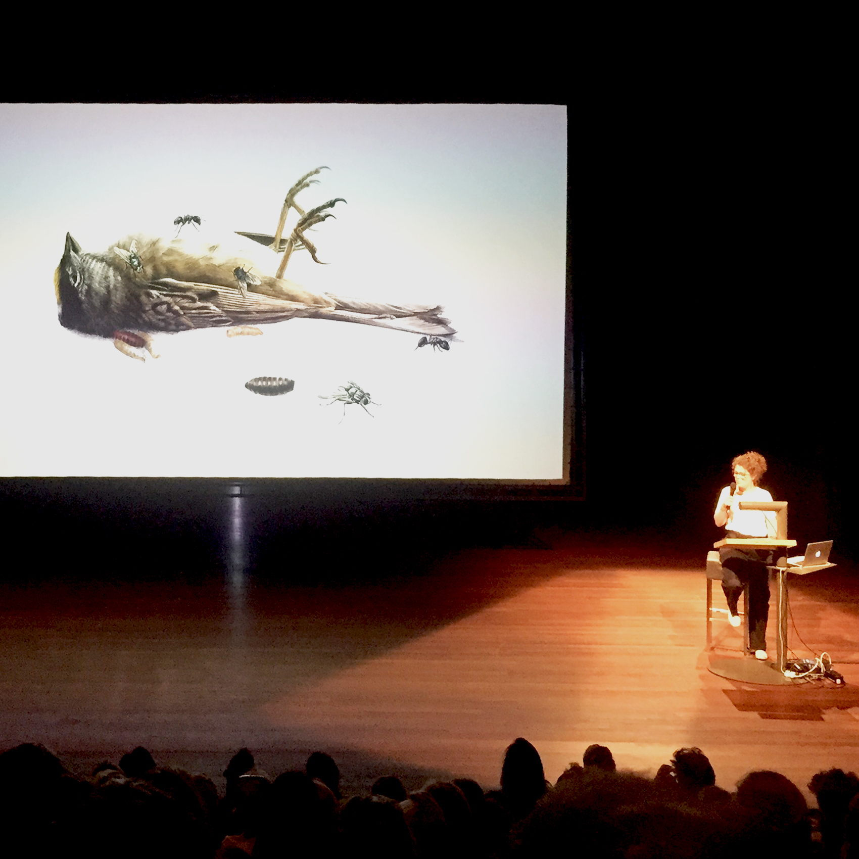 Medy Oberendorff at the Biennial of Illustration in Haarlem