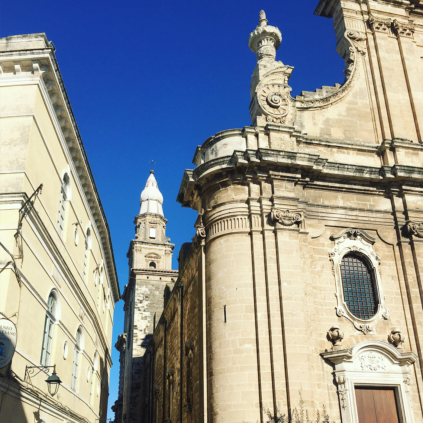 Monopoli has over 20 churches in its small centro storico. This is the cathedral